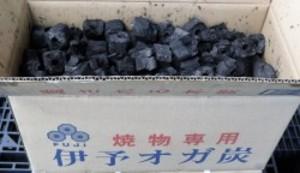 備長炭 炭 木炭 富士炭化工業 焼物専用伊予オガ炭(3-5cm)10kg 国産品最高峰のオガ炭
