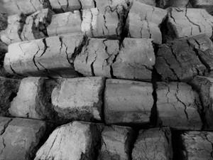 輸入オガ炭 (5-10cm)1kg バラ売り 特価品