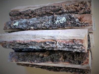 大分の薪 椚(クヌギ)直径 5-10cm長さ 約30cm 5kg クヌギの薪 乾燥薪