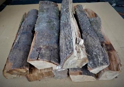 大分の薪 樫(カシ)直径 5-15cm長さ 約40cm 10kg カシの薪 乾燥薪